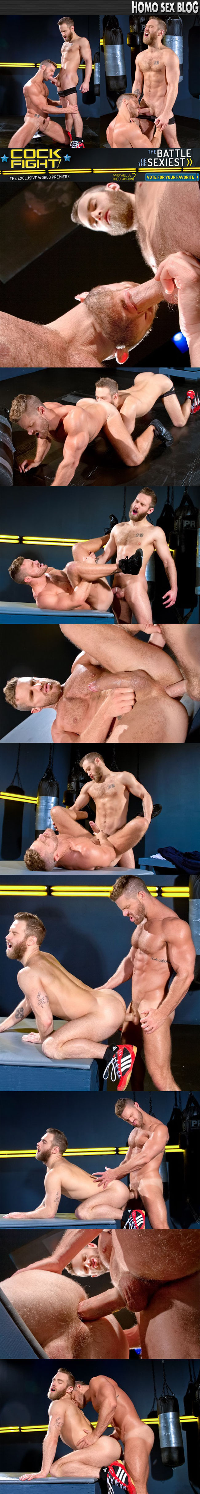 free Raging Stallion pictures